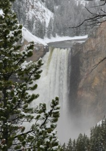 Lower Falls, Yellowstone Grand Canyon